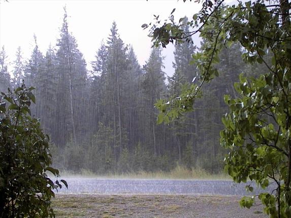 بارش برف و باران