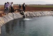شهرستان کوهدشت منبع آب پایدار ندارد/ برای آب منطقه باید فکری اساسی شود