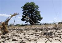 خشکسالی در استان سمنان منابع آبی را با کسری ۱۳۴ میلیون متر مکعب مواجه کرده است