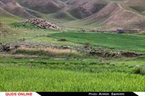 بذرهای بومی و سازگار با اقلیم سمنان در سطح مراتع و رویشگاههای جنگلی کشت میشود