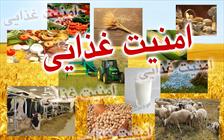 طرح اولیه سند امنیت غذایی البرز ۳۰ آبان ارائه می شود