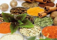 سایت گیاهان دارویی در استان لرستان ایجاد می شود