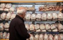 مرغ هورمونی شایعه یا واقعیت؟