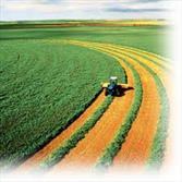 رئیس سازمان نظام مهندسی کشاورزی و منابع طبیعی آذربایجان شرقی