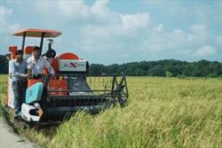 رئیس مرکز توسعه مکانیزاسیون کشاورزی کشور