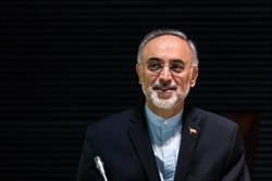 صالحی از تکمیل روند تبادل سوخت میان ایران و روسیه خبر داد