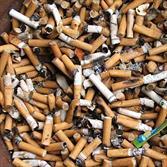 فیلتر سیگار