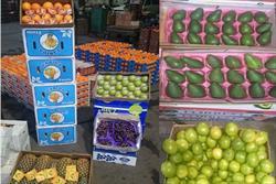 آخرین وضعیت عرضه میوههای خارجی و قاچاق