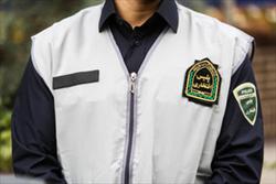 پلیس افتخاری