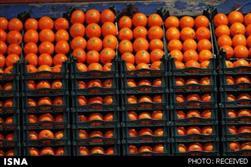 ریشهکن شدن میوه قاچاق در میادین و وفور آن در بازار!