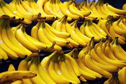 واردات موز هم مشروط شد/ واردات در مقابل صادرات سیب درختی