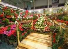 پنجمین نمایشگاه گل و گیاه، گیاهان دارویی