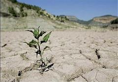 کشاورزی در کم آبی