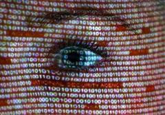 جاسوسی به بهانه مبارزه با تروریسم
