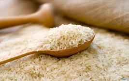 برنج آلوده