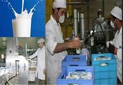 صادرات لبنیات ایران