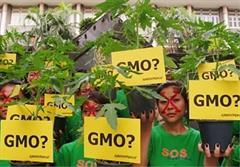 تظاهرات علیه محصولات تراریخته