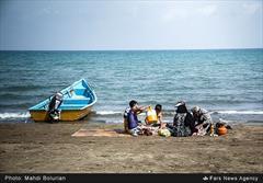 سواحل مازندران