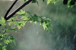بارش باران و وقوع سیل