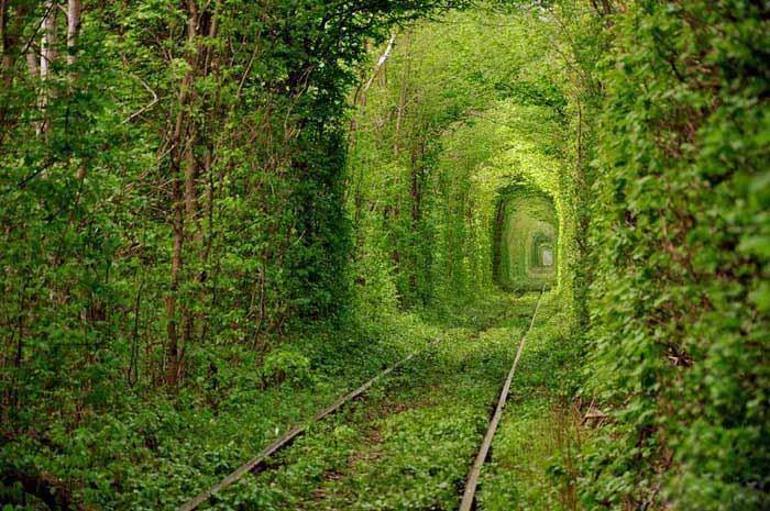 Фото природи пейзажі