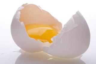1439813209salmonella_egg.jpg