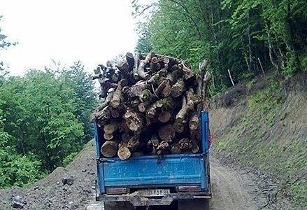 کشف قاچاق چوب