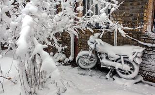 برف و سرما