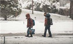 بارش برف ، تعطیلی مدارس