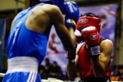 انتقاد بوکسور المپیکی ایران از شرایط حاکم بر بوکس/ فعلا تنها تمرین می کنم