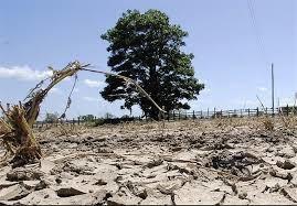 خشکسالی در یزد
