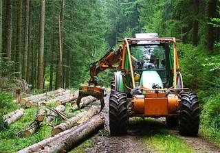 بهره برداری از جنگل