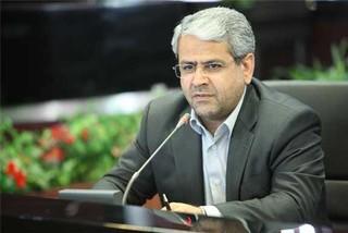 سیدکامل تقوی نژاد رئیس سازمان مالیاتی کشور