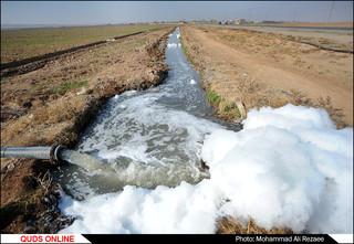 فاجعه در کشف رود؛تخلیه روزانه 400 تانکر فاضلاب در این رود تاریخی/گزارش تصویری