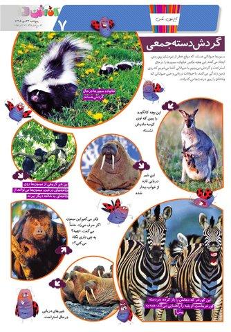 Kafshdoozak-No.11.pdf - صفحه 7