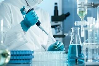 محققان و دانشمندان