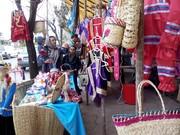 ۲۳ بازارچه صنایع دستی در کرمان برپا شد
