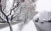 بارش برف در خلخال مسافران نوروزی را غافلگیر کرد