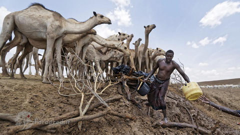 خشکسالی وحشتناک در کنیا