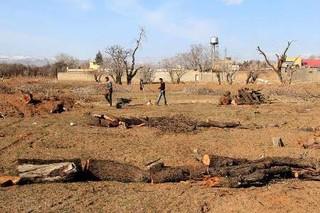 گزارش باغستانهای قزوین