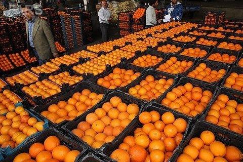 پرتقال - کراپشده