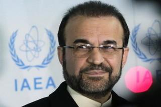 رضا نجفی سفیر و نماینده دائم جمهوری اسلامی ایران در آژانس بین المللی انرژی اتمی