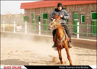 سوارکاری و پرورش اسب