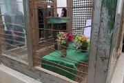 «عیاران» در زیر غبار فراموشی/آرامگاه «یعقوب لیث» شکوه شهریار ایرانی را زیر سوال می برد