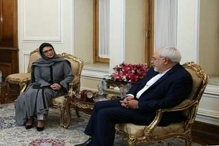 نماینده جدید صندوق جمعیت سازمان ملل متحد در ایران با محمد جواد ظریف