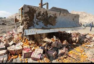 امحاء میوه قاچاق