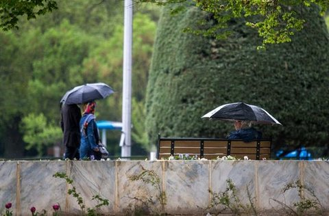 بارش باران در ایلام