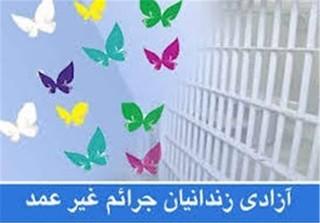 زندانیان جرائم غیرعمد