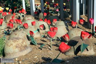 بازدید کاروان راهیان نور آستان قدس رضوی از معراج شهدا و منطقه دهلاویه
