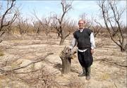 آفت بیکاری و خشکسالی ریشه زندگی در روستاهای سمنان را خشک میکند