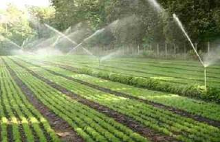 سیستم آبیاری نوین